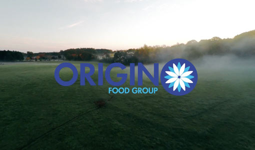 Origin food group screenshot